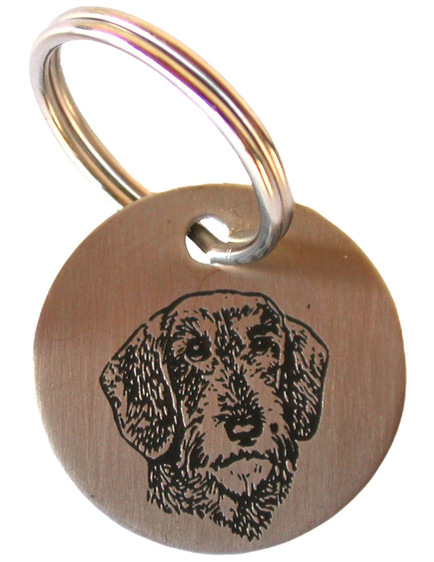 Name tag for dogs, Stainless steel