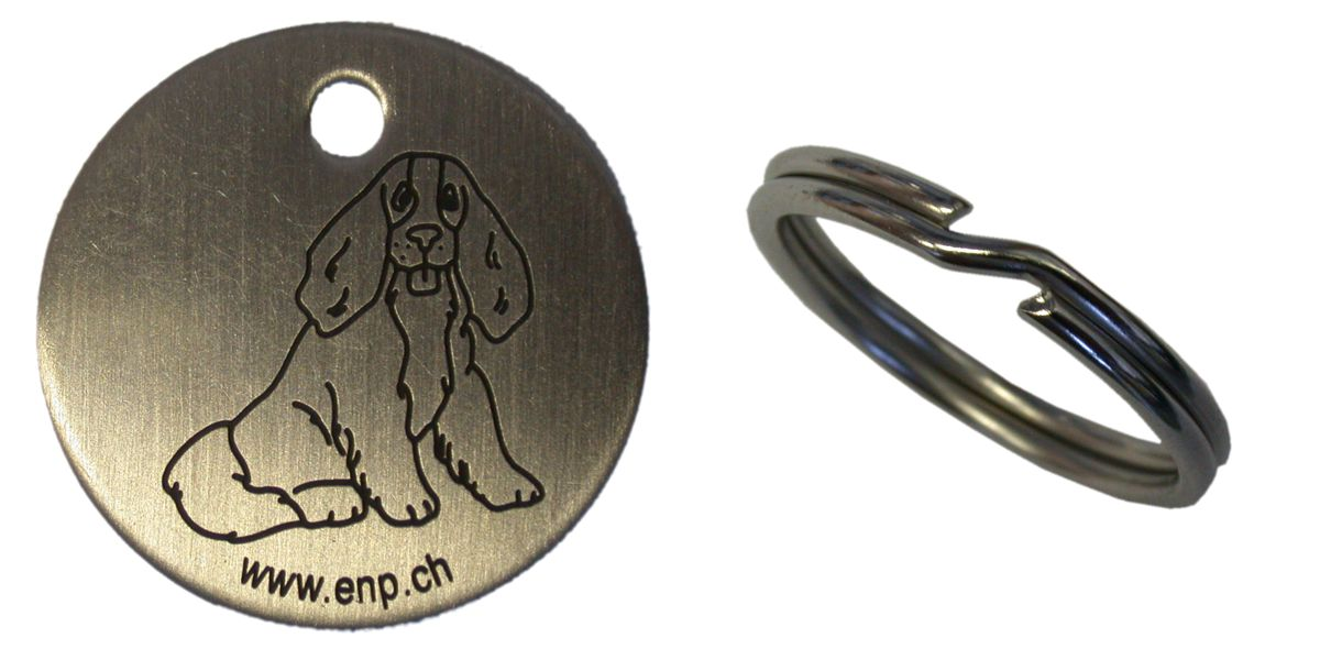 stainless steel medal id tag for pets dogs and cats